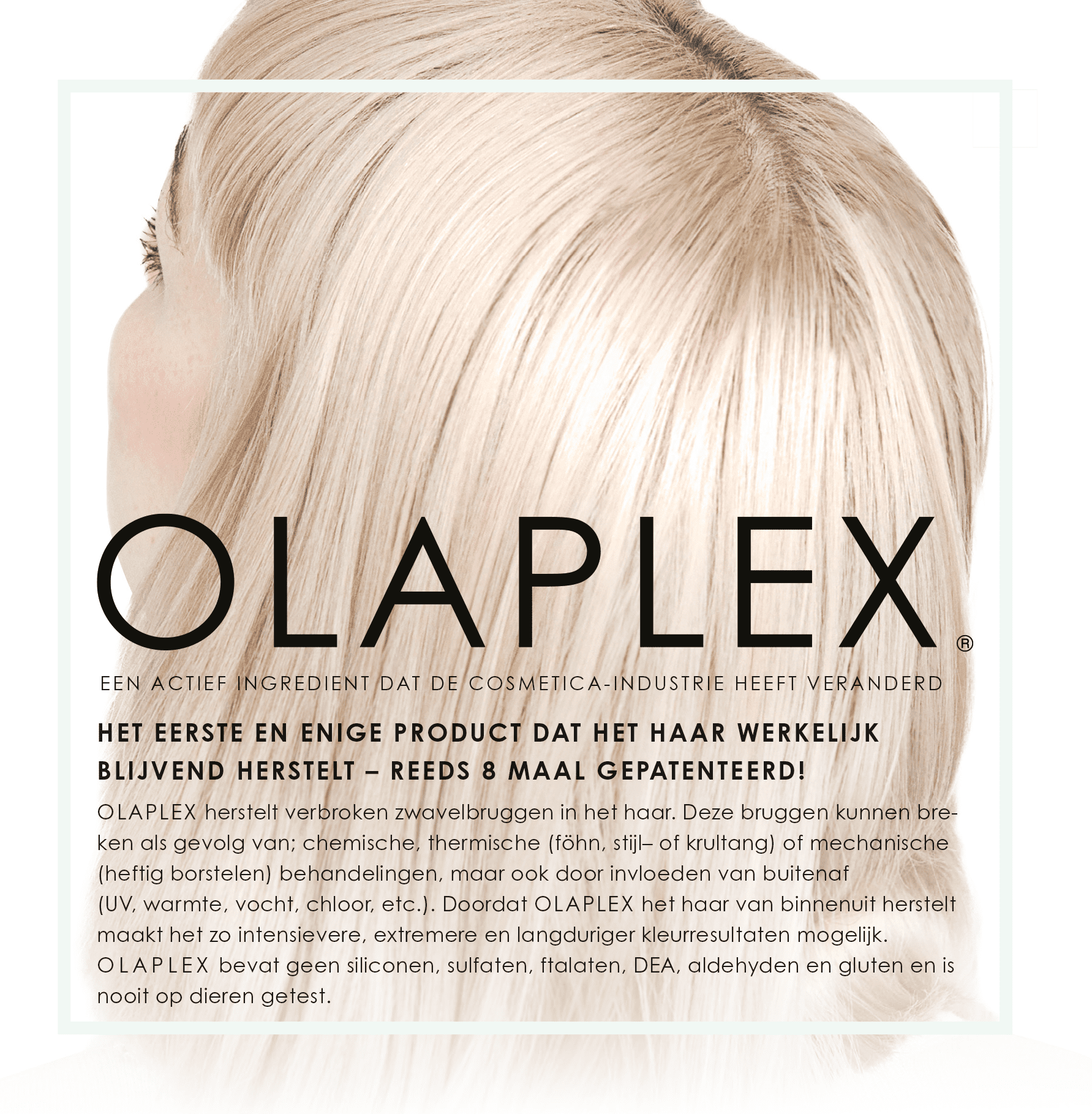 FAQ OLAPLEX_NL-1